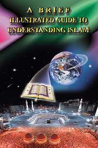 Cover des englischen Buches.  Zum Vergr��ern hier klicken