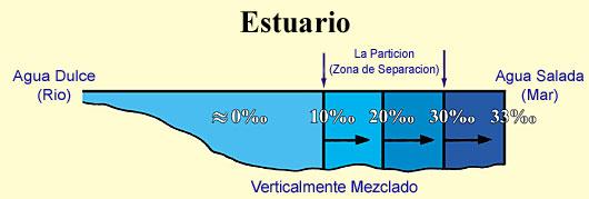 Los mares y ríos Ch1-1-e-img2-big