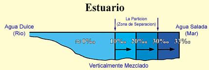 Figura 14 (Haga click aquí para agrandar la imagen)
