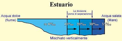 Figura 14 (Fare clic qui per ingrandire)