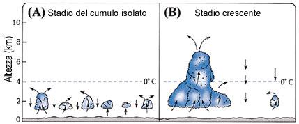 Figura 19 (Fare clic qui per ingrandire)
