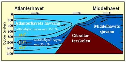 Saltvann og ferskvann møtes